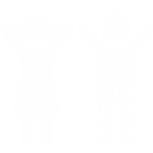animazione bambini divertimento