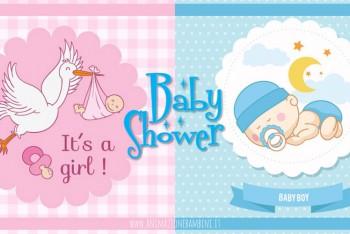 baby shower festa tema